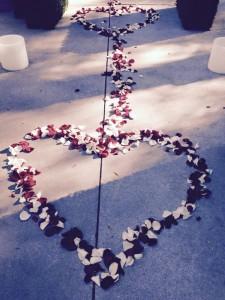 2015-02-15 hearts of petals